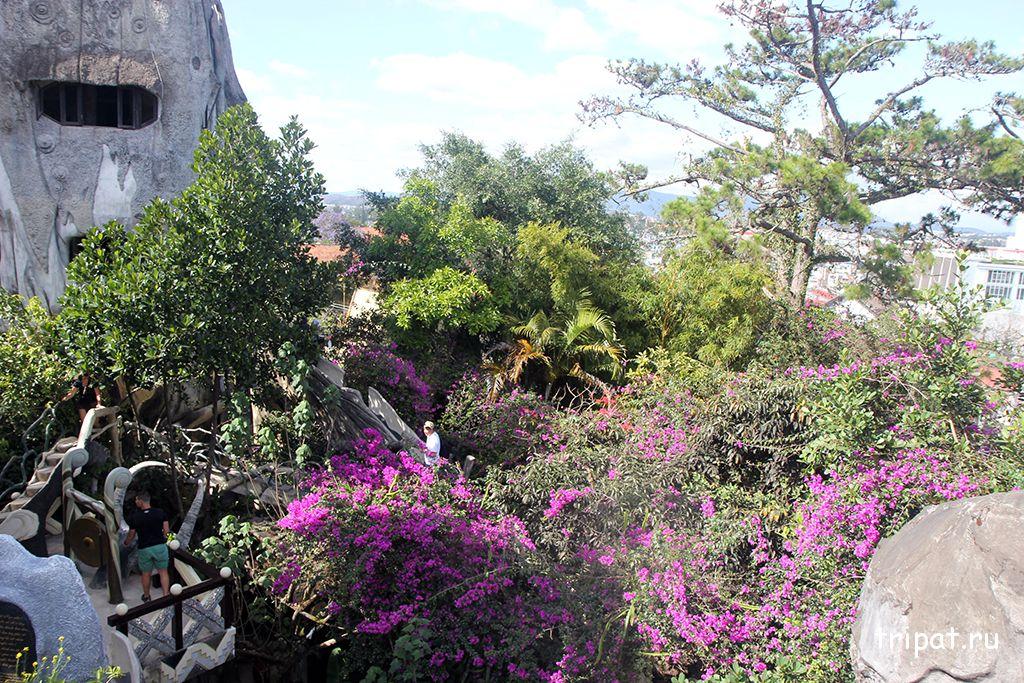 цветы вид с балкона