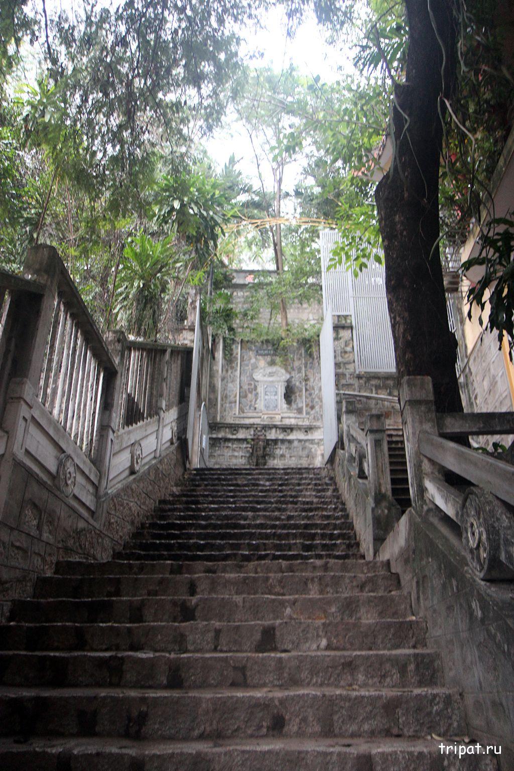 лестница к будде