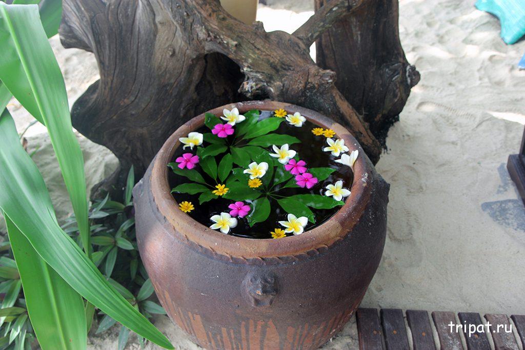 Горшок с плавучими цветами