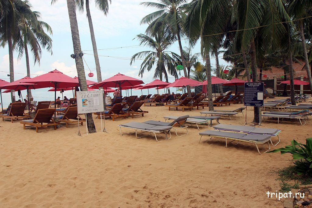 Шезлонги и раскладушки на пляже