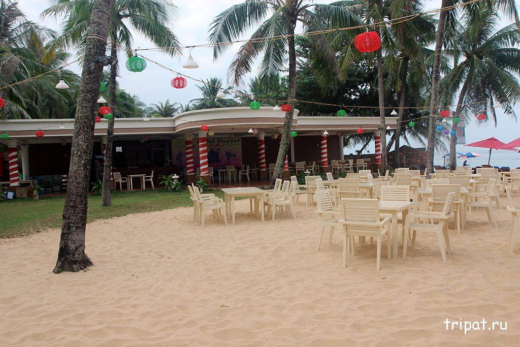 Подготовка к вечеринке на пляже