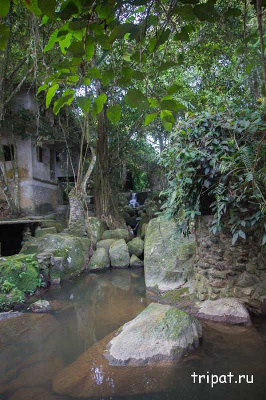 Река в сады