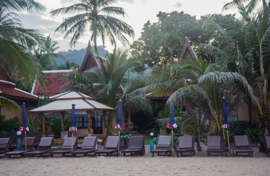 Лежаки отеля Fair House