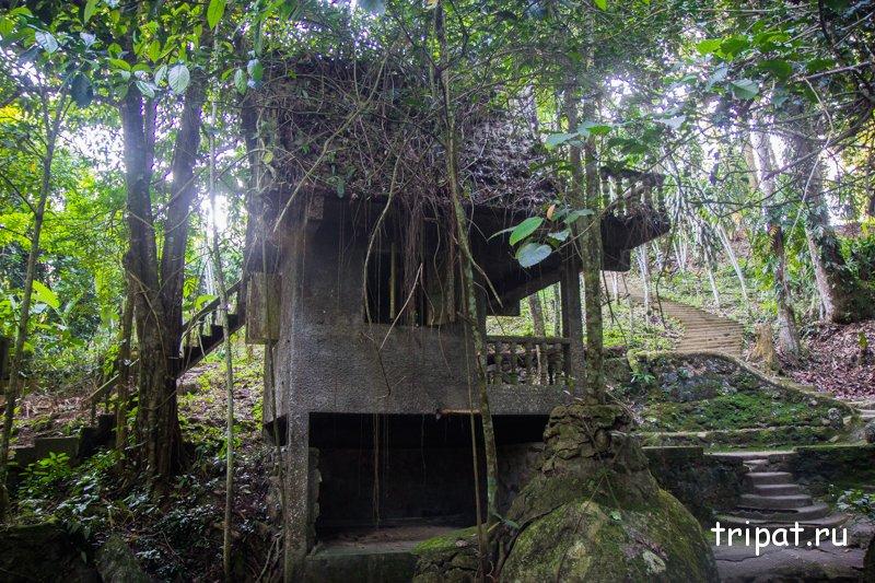 Дом среди лиан