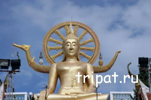 Будда крупным планом