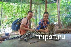 Обнимашки с леопардом