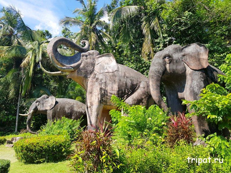 Слоны у заброшенного отеля - корабля